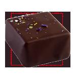 Praline chocolat noir Louise